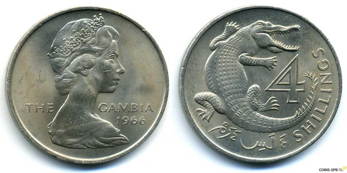 Коллекция монет крокодилы нож кондор 3 кизляр купить